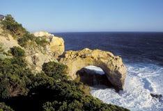 曲拱巨大海洋系列 库存图片