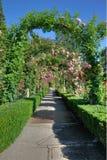 曲拱庭院路径上升了 免版税图库摄影