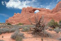曲拱成拱形国家公园地平线 免版税库存照片