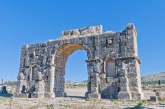 曲拱找出摩洛哥胜利volubilis 免版税库存照片