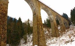 曲拱桥梁在黑森林里 免版税库存照片