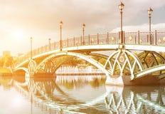 曲拱桥梁在Tsaritsyno 免版税库存照片