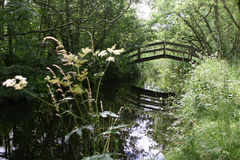 曲拱桥梁老土气 免版税库存照片