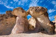 曲拱采蘑菇石头 库存图片