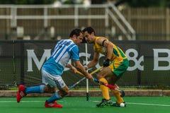 曲棍球国际阿根廷v南非 免版税库存图片