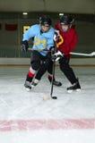 曲棍球运动员并列争球在溜冰场 免版税图库摄影