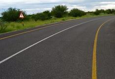 曲线空的路 免版税库存图片