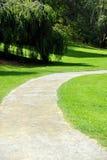 曲线路在公园 免版税库存图片