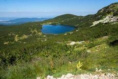 更低的湖,七个Rila湖,保加利亚的风景 库存照片