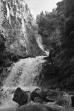 更低的雷德在Skagway,黑白的阿拉斯加跌倒 图库摄影