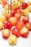 更加多雨的黄色樱桃点心,可口碗用莓果 库存图片