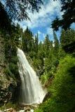 更加多雨mt的国家公园 库存图片