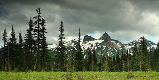 更加多雨mt的国家公园 图库摄影