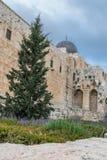 更加接近耶路撒冷的寺庙  库存照片