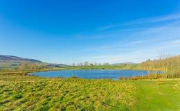 更加桃红色的池塘春天,Middleham,北约克郡 免版税图库摄影