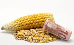 更加消耗大的玉米 库存照片
