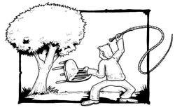 更加温驯的结构树 免版税库存图片