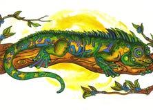 更加镇静的变色蜥蜴 免版税库存照片