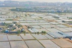 30更改的卫兵7月韩国国王好朋友s汉城南部 免版税库存照片