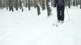 更老的人速度滑雪 股票录像