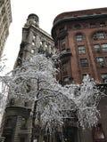 曼哈顿图在冬天, NYC 图库摄影