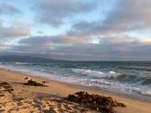曼哈顿比奇加利福尼亚沙子海带 免版税库存图片