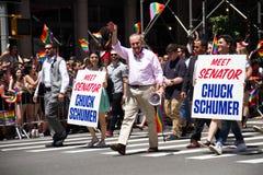 曼哈顿,纽约, 2017年6月:在同性恋自豪日游行的参议员小组 图库摄影