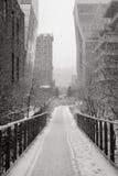 曼哈顿Highline在冬天, NYC 免版税库存图片