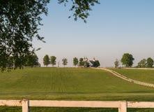 曼彻斯特农场在日出的列克星敦肯塔基 免版税库存照片