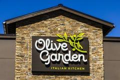 曼西-大约2017年3月:橄榄色的庭院意大利人餐馆 橄榄色的庭院是Darden餐馆分部v 图库摄影