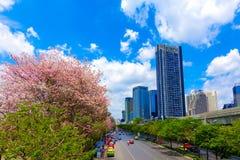曼谷与沿途有树的街道视图在双方和都市风景作为背景 免版税库存图片