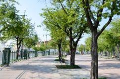 曼谷公园 库存图片