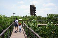 曼谷泰国2019年4月13日:走和学会树的母亲和孩子在PTT重新造林学院 免版税库存照片