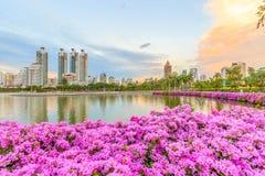 曼谷泰国Benjasiri公园 免版税库存图片
