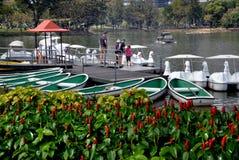 曼谷,泰国:出租鸭子小船在Lumphini公园 免版税库存照片