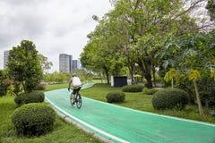 曼谷,泰国- 2018年4月7日:在绿化林荫道的一辆人骑马自行车在公园 免版税图库摄影