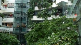 曼谷,泰国- 2018 12月18日,Emquartier -豪华购物中心 购物中心设计以环境绿色 影视素材