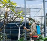 曼谷,泰国- 11月29 :使用喷雾器的人花匠为 库存图片