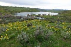 曼Creek水库,爱达荷 免版税库存照片