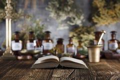 替代竹浴biloba银杏树项目医学温泉盘 商标和文本的地方 库存照片