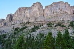 替罪羊Wildrness的石灰石峭壁 库存图片