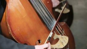 最低音fiddlestick串起戏剧 特写镜头 股票录像