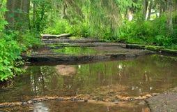 最低水位水平在河 免版税库存照片