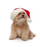 最佳的圣诞节礼品 免版税库存照片