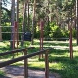 最佳的地方在森林里 图库摄影