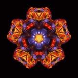 最佳的巨大万花筒紫色6 库存图片