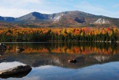 最佳的秋天 免版税库存图片
