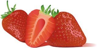 最佳的自定义在线草莓甜点向量 图库摄影