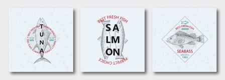 最佳的鲜鱼金枪鱼,三文鱼,雪鱼 也corel凹道例证向量 库存例证