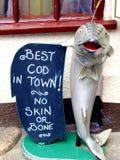 最佳的鳕鱼在镇里 库存照片